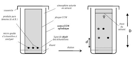 Image 1 sci 04i01 couleurs et arts r viser le cours - Chromatographie sur couche mince principe ...
