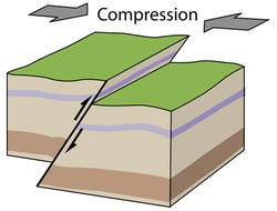 La tectonique des plaques, la convergence, les zones de collision continentale - illustration 6