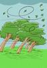 Le respect de l'environnement - illustration 7