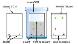 La chromatographie