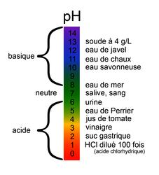 pH de quelques produits courants