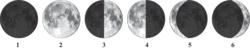 Les phases de la Lune et les éclipses - illustration 1