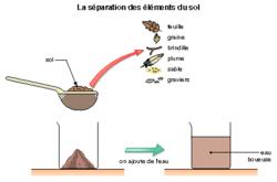 Le sol, un milieu particulier - illustration 2
