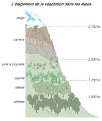 L'influence du climat sur l'environnement - illustration 2