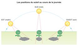 Les variations de l'éclairement et de la température dans un même lieu - illustration 1