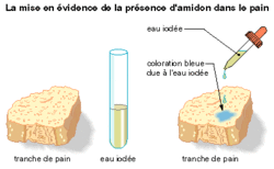 La composition du pain - illustration 2