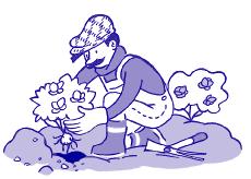 Résoudre un problème à l'aide d'une division - illustration 1