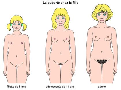 La puberté chez la fille - illustration 1