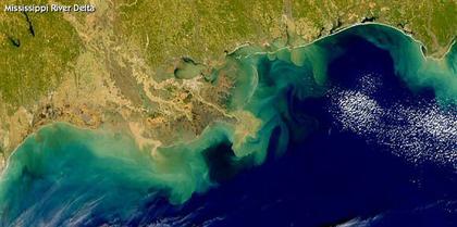 Les zones mortes : une menace pour l'environnement