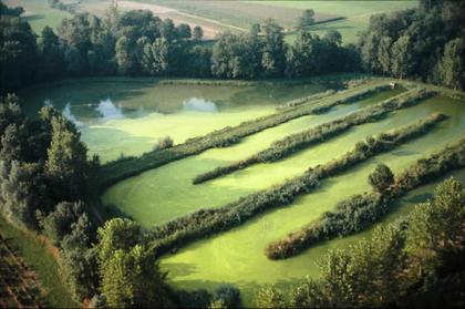 Le traitement des eaux usées par lagunage