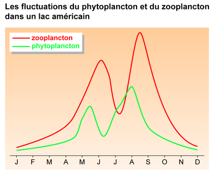 Les fluctuations du phytoplancton et du zooplancton dans un lac - illustration 1