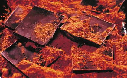 Carrés de chocolat et cacao