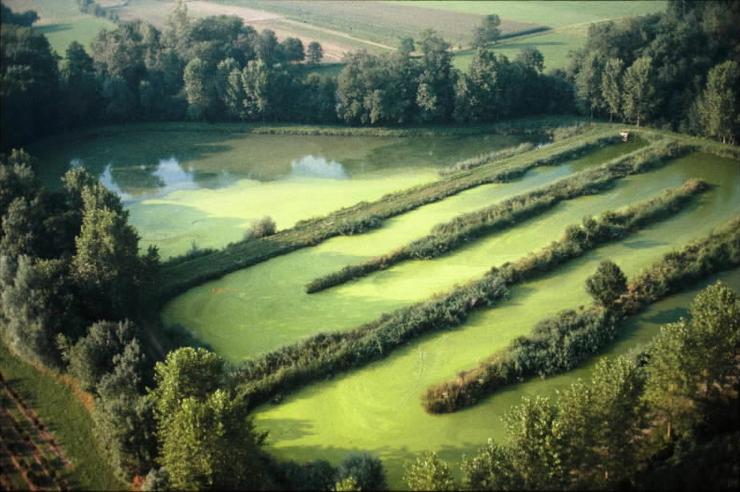Image eau i07 le traitement des eaux us es par lagunage base documentaire en sciences - Lagunage des eaux usees ...
