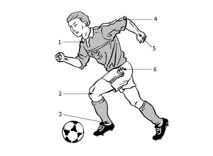Les articulations du corps - illustration 1