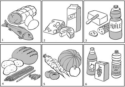Les familles d'aliments (2) - illustration 1