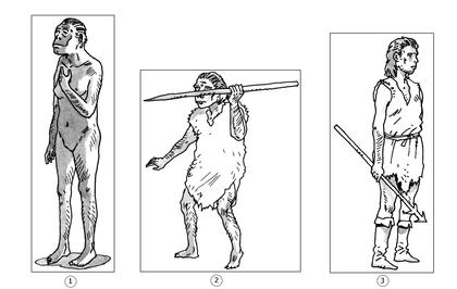 Les hommes préhistoriques - illustration 1