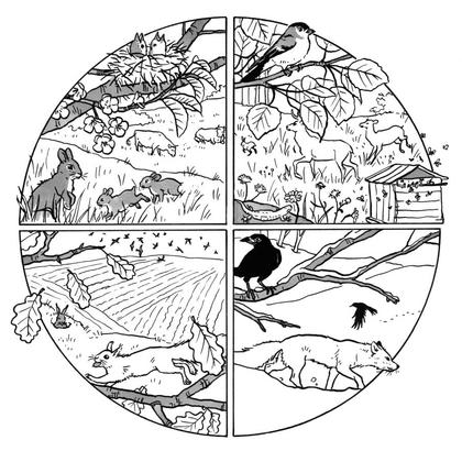 Les animaux au fil des saisons - illustration 1
