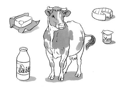 Les aliments fabriqués à partir du lait de vache - illustration 1
