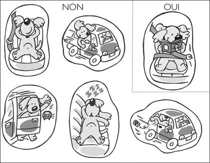La sécurité en voiture - illustration 1