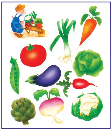 Les différents légumes (2) - illustration 1
