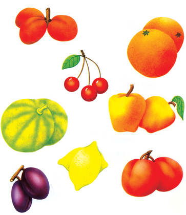 Fruits de saison - illustration 1