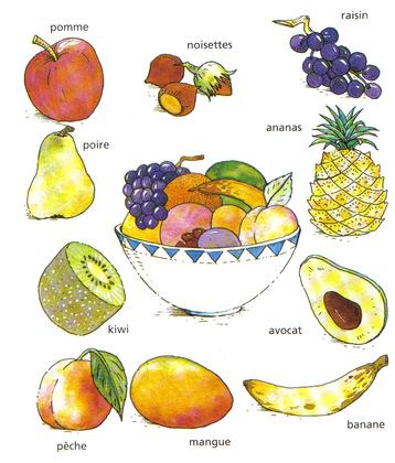 Les différents fruits (2) - illustration 1