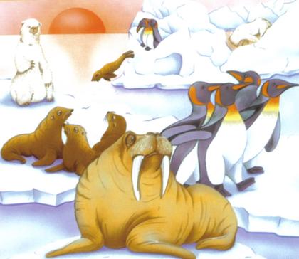 Les animaux des pôles - illustration 1