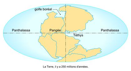 La Pangée - illustration 1