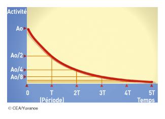 Décroissance de l'activité d'un échantillon radioactif - illustration 1