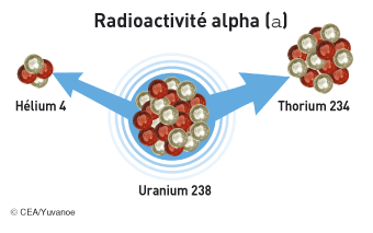 La radioactivité alpha - illustration 1