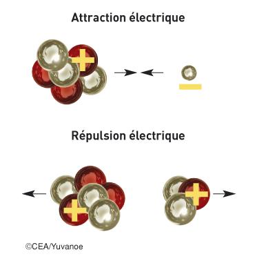 Attraction et répulsion électrique dans un atome - illustration 1