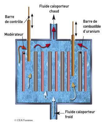 combustible utilise dans le reacteur d une centrale nucleaire