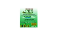 Cartel de la Campana de reforestación de Aragón, Espana