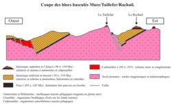 La convergence lithosphérique : contexte de la formation des chaînes de montagnes - illustration 3