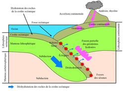 Schéma-bilan : Activité magmatique au niveau d'une zone de subduction