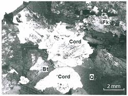 Photographie d'une lame mince du granite de Gèdre observée au microscope polarisant en LPA