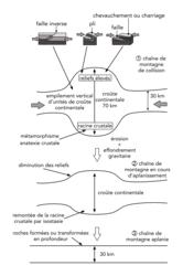 Schéma bilan : formation et disparition des reliefs d'une chaîne de montagnes de collision