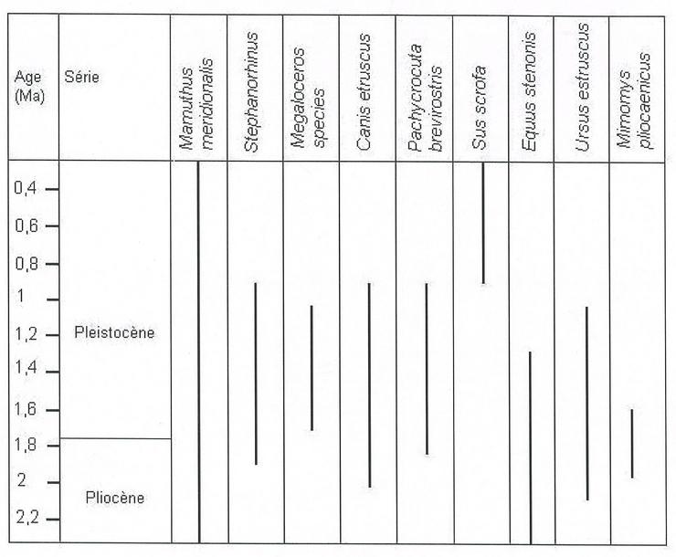 Ce sont deux types de datation des fossiles