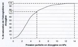 Physiologie de l'appareil respiratoire - illustration 3